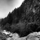 Big river  by Erdj