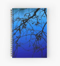 Black and Blu 1 Spiral Notebook