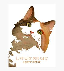 Life Without Cats ...I Don't Think So! Photographic Print
