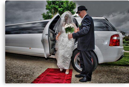 Arrival of the Bride by Michael Rowley