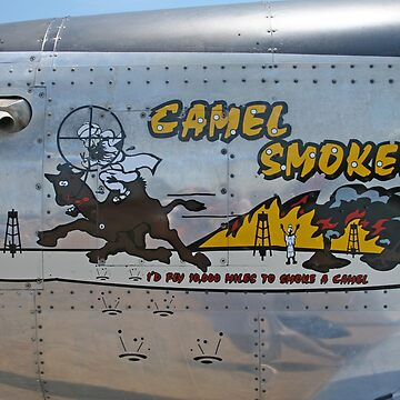 Camel Smoker by SirEagle