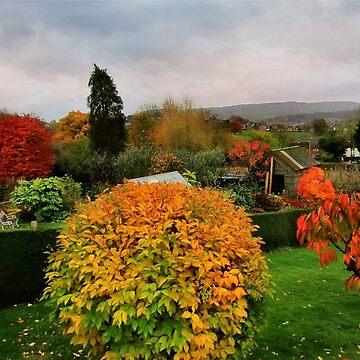 Gardens in autumn by missmoneypenny