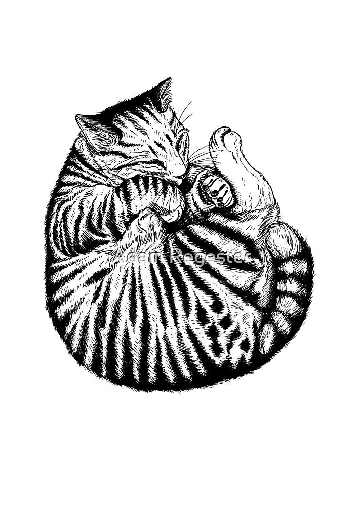 Sleeping Cat by Adam Regester