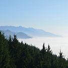 Oregon Coast Clouds by CanOverland