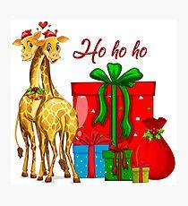 Christmas Giraffes Ho Ho Ho   Photographic Print
