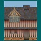 GOOSTREY - Medicine House by CRP-C2M-SEM