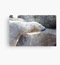 Polar bear1 Berlin zoo Canvas Print