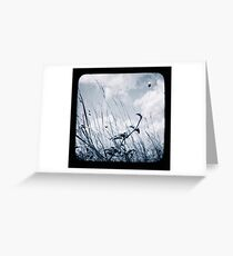 Against the Breeze Greeting Card