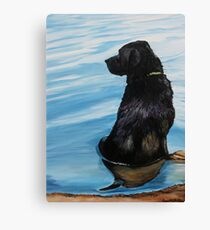 Black Lab in Water Canvas Print