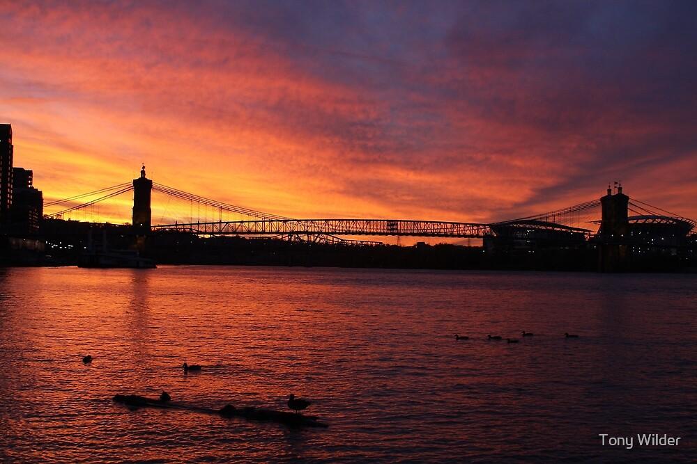 Cincinnati Sunset by Tony Wilder