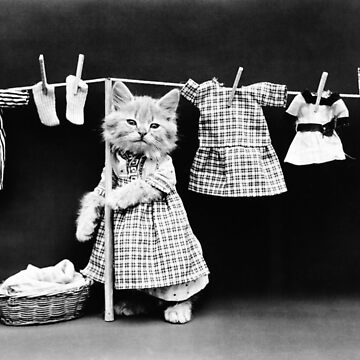 Cat Hanging Laundry On Clothesline - Harry Whittier Frees by warishellstore