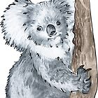 Koala by Alice Duigan Mussared