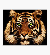 Tiger Thoughts Photographic Print