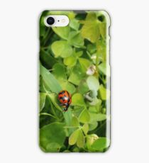 Lady Takes Daily Stroll iPhone Case/Skin