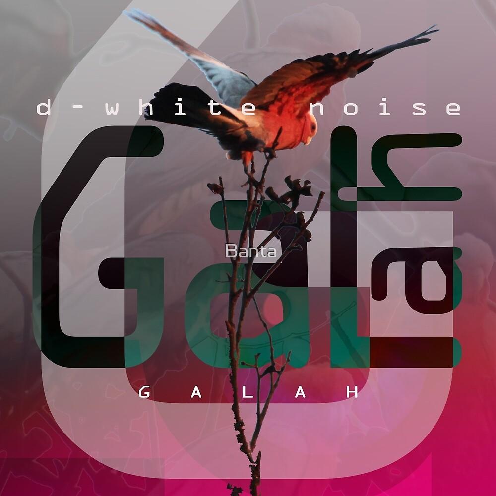 D-White Noise - Galah Merch - Version 0 by Banta