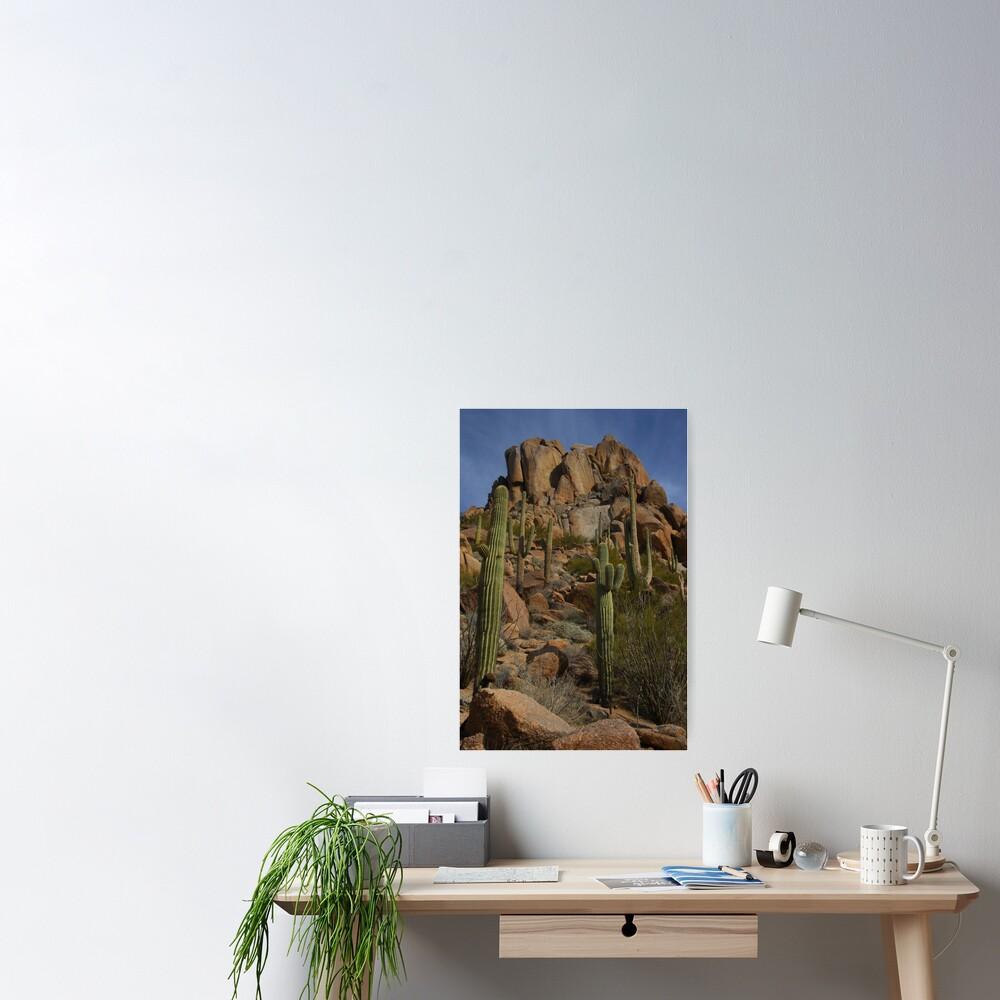 North Scottsdale - Pinnacle Peak - Arizona Poster