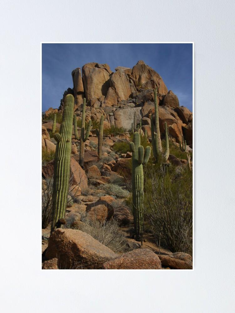 Alternate view of North Scottsdale - Pinnacle Peak - Arizona Poster