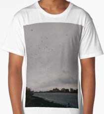 #bird #sky #storm #tree #goose #weather #water #city #winter #nature #lake #colorimage #copyspace #modeoftransport #motion #nopeople #flying #airvehicle #lightnaturalphenomenon, Flock, birds Long T-Shirt