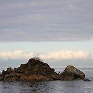witness rock in Georgia Strait by TerrillWelch