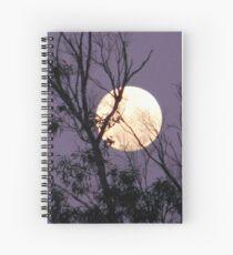 Moon in Gemini Spiral Notebook