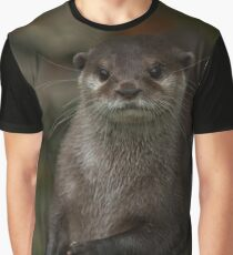 Curious Otter Graphic T-Shirt