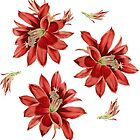 Red Christmas Cactus Flowers Floral Pattern by tanjica