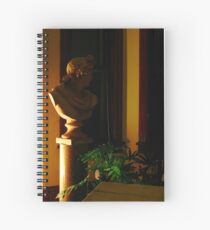 Midnight Muse Of Apollo Spiral Notebook