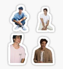 Noah Centineo- Collage Starter Pack Sticker