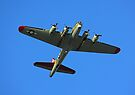 Boeing B17 Flying Fortress by Michael  Moss