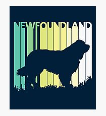 Cute Newfoundland Silhouette Photographic Print