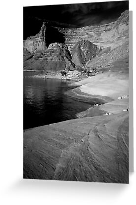 Sandstone Shore and Cliffs, Lake Powell, Utah by Tom Fant