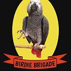 Birdie Brigade Congo African Grey Parrot  by einsteinparrot