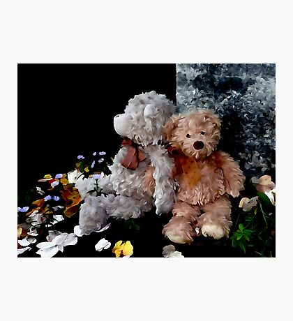 Teddy Bear Buddies Photographic Print
