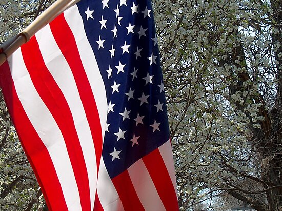 Flag and Pear Tree by sandycarol