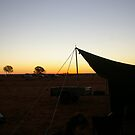 Camping at the camel races by julz