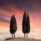 Sunset at Toscany by JBlaminsky