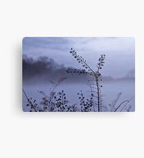 Foggy Winter Botanicals in Landscape Metal Print