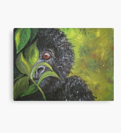 Peek-a-boo! Canvas Print