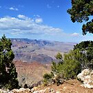 Grand Canyon Color by Warren  Thompson