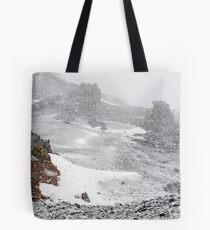 Inside the Snowdome Tote Bag