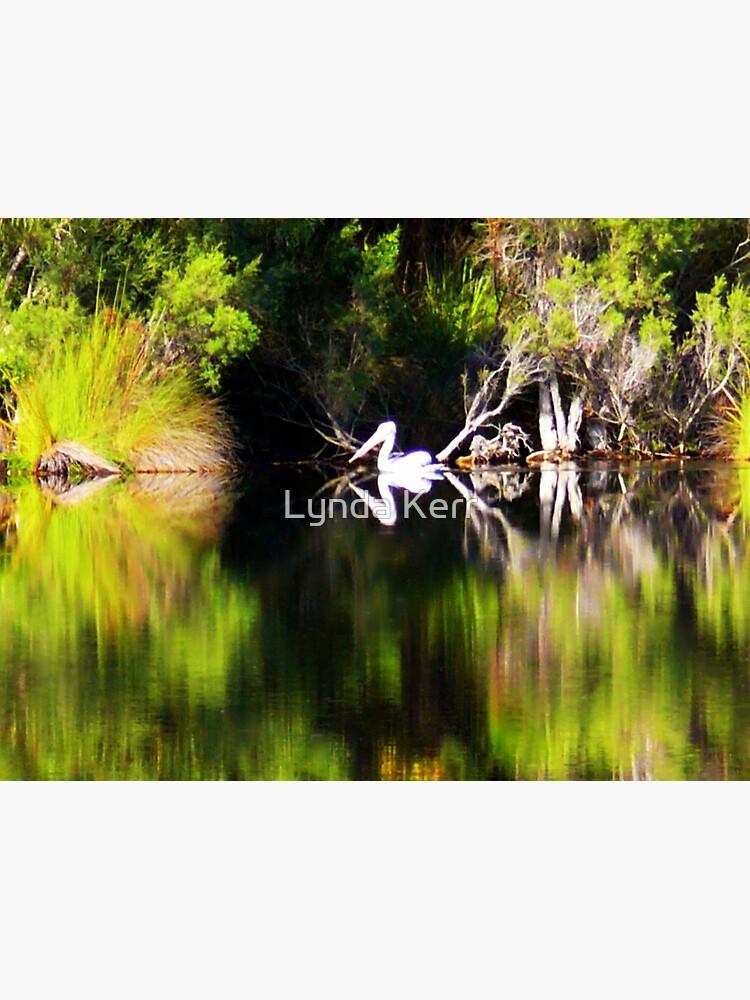Pelican Dreamin' by 4sure