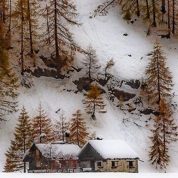 Autumnal snowfall by birba