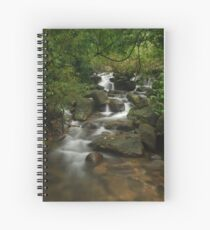 Forest Stream Spiral Notebook
