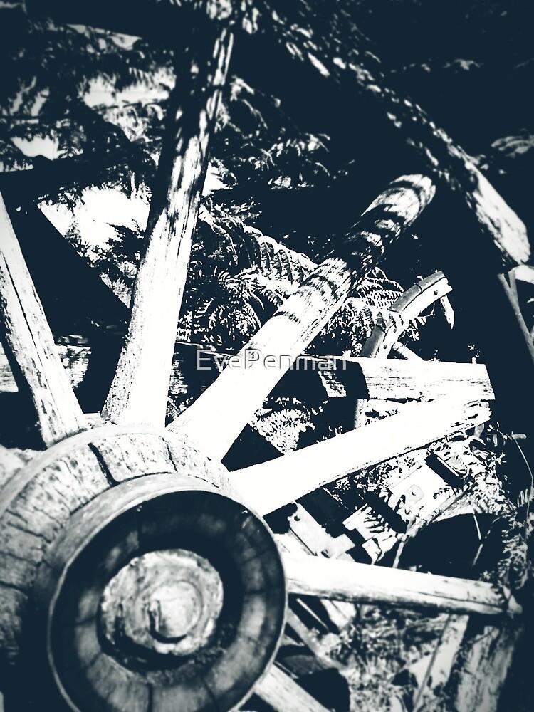 Wagon Wheel B&W by EvePenman
