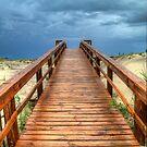 Into The Storm by Tammy Wetzel