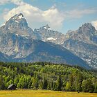 USA. Wyoming. Grand Teton National Park. by vadim19