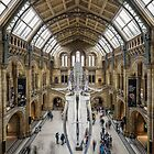 Natural History Museum, London by chrisjdalton