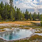 USA. Wyoming. Yellowstone National Park. Shield Spring. by vadim19