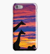 zebra and giraffes resting in the sunset iPhone Case/Skin