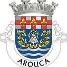 Coat of Arms of Arouca, Portugal by Tonbbo